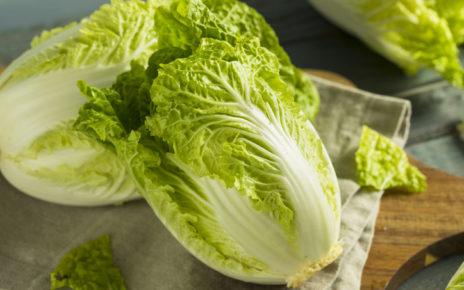 ประโยชน์ของผักกาดขาว