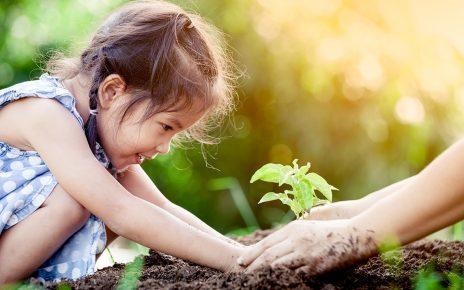 กิจกรรมเหมาะสำหรับเด็ก ๆ